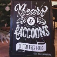 Bears & raccoons