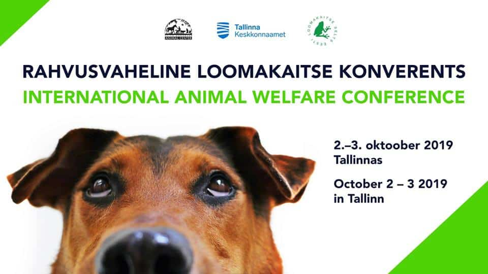 International Animal Welfare Conference 1