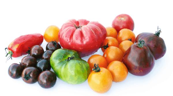 Tarte tatin aux 2 tomates 1