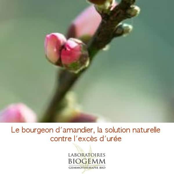 Biogemm