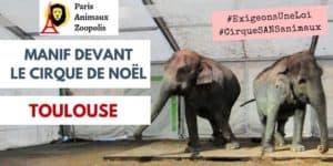 Manif devant le Cirque de Noël – Toulouse 2