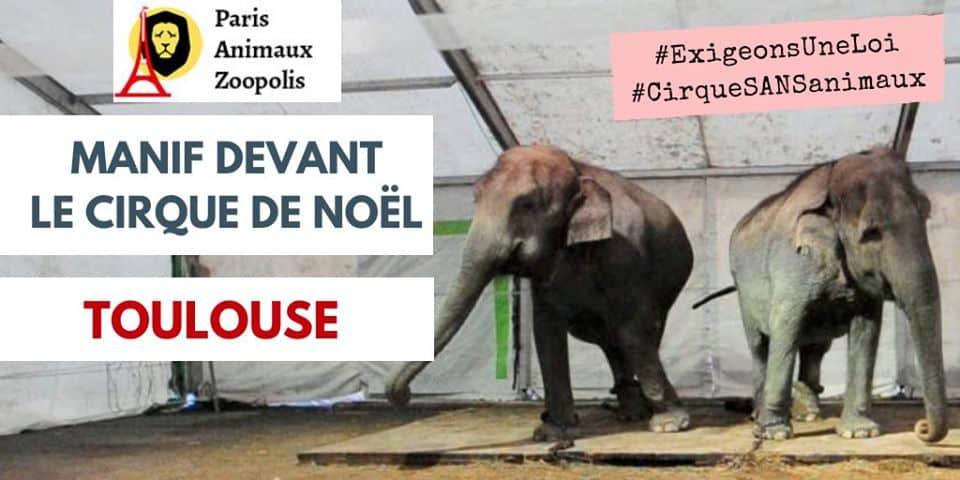 Manif devant le Cirque de Noël – Toulouse 1