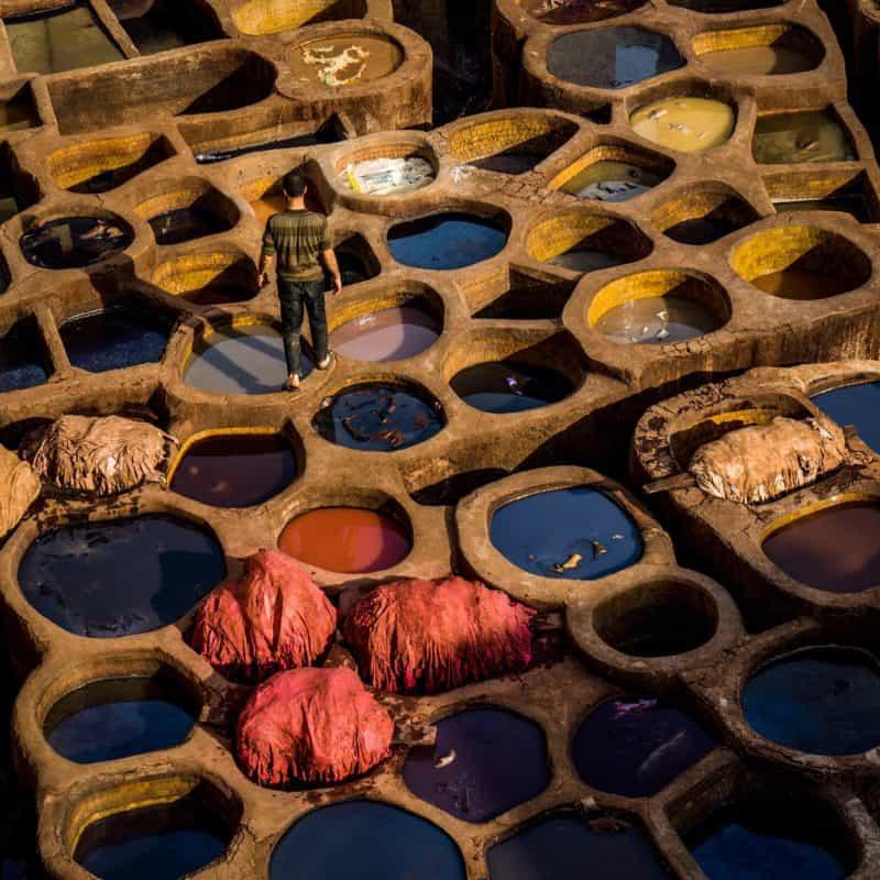 Comment et pourquoi ne pas acheter de cuir ? Les alternatives éthiques et écologiques 1
